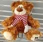 Wrexham AFC Teddy Bear
